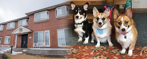 愛犬と泊まる宿 ななつぼし