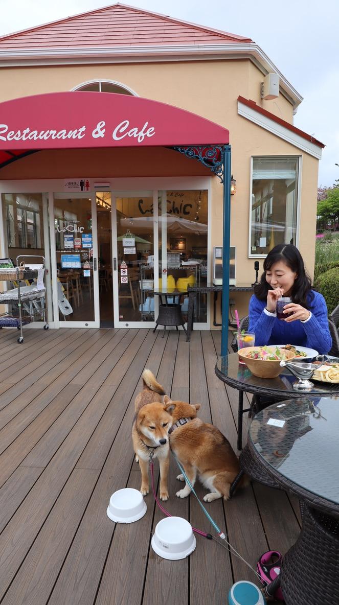 レストラン&カフェ ラ シック