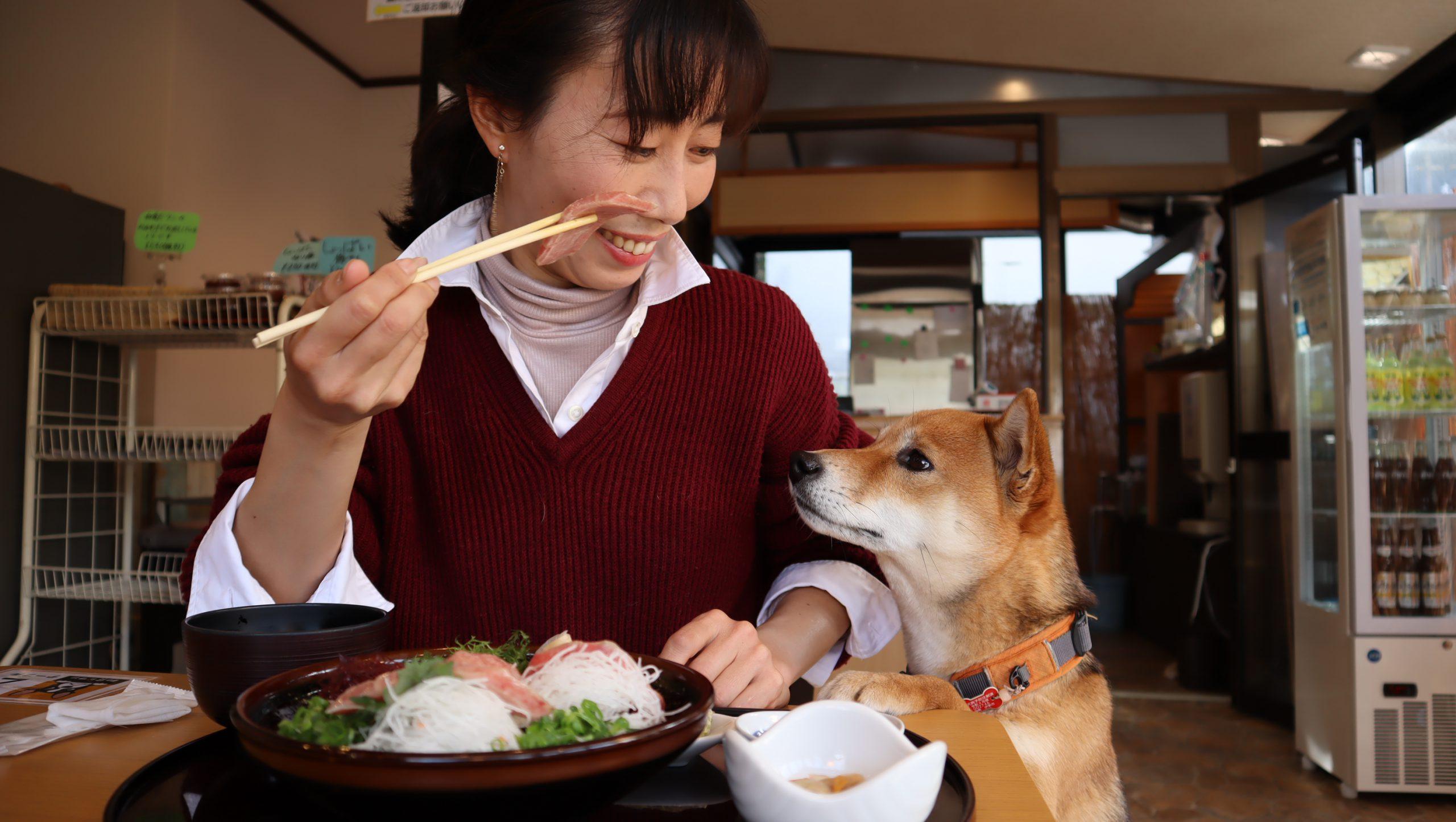本家 鮪屋 和食だワン