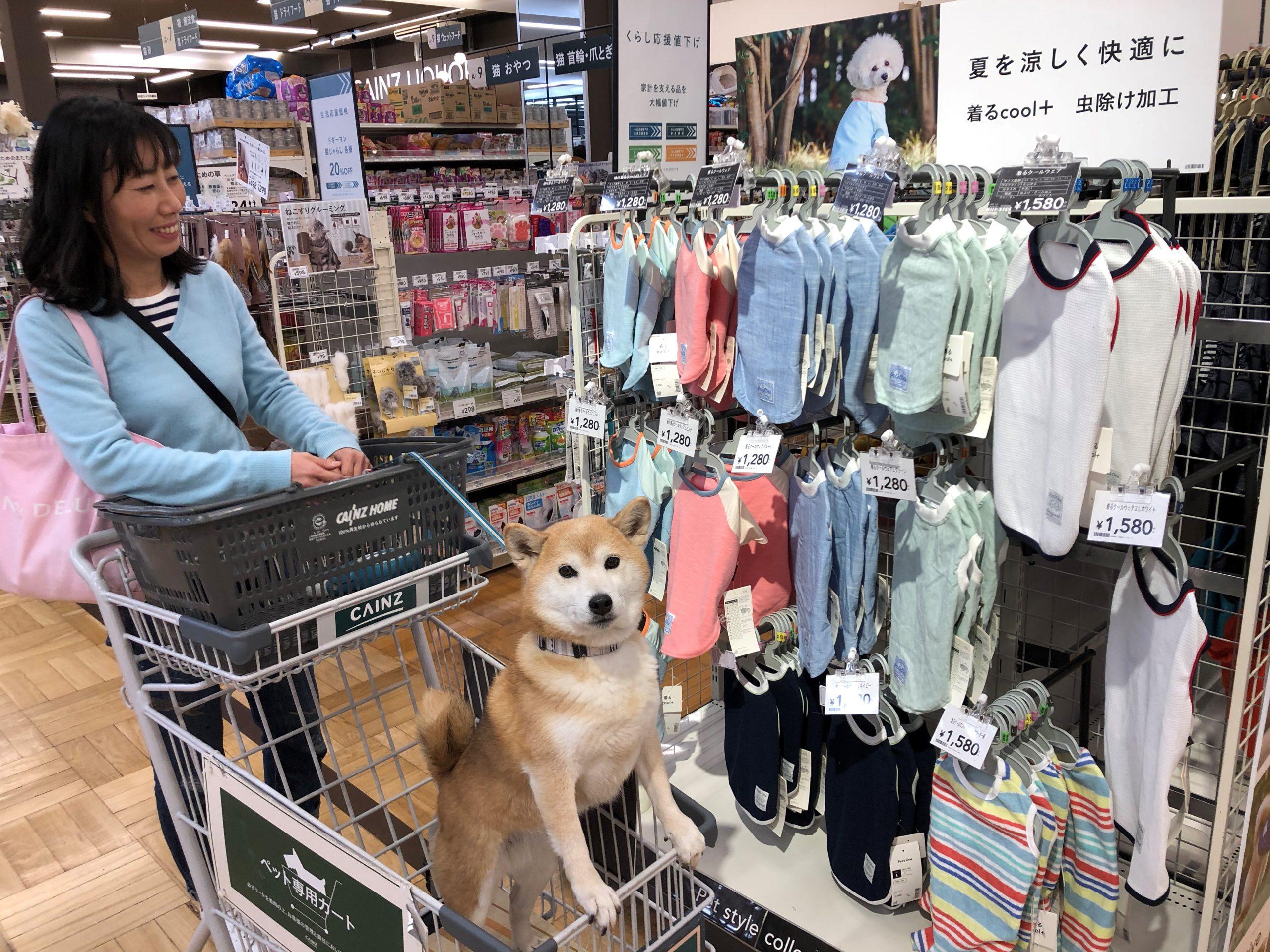 カインズホーム伊東店